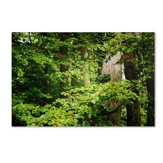 Philippe Sainte-Laudy 'Go Green' Canvas Art