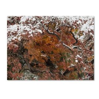 Kurt Shaffer 'Early Snow Fall' Canvas Art