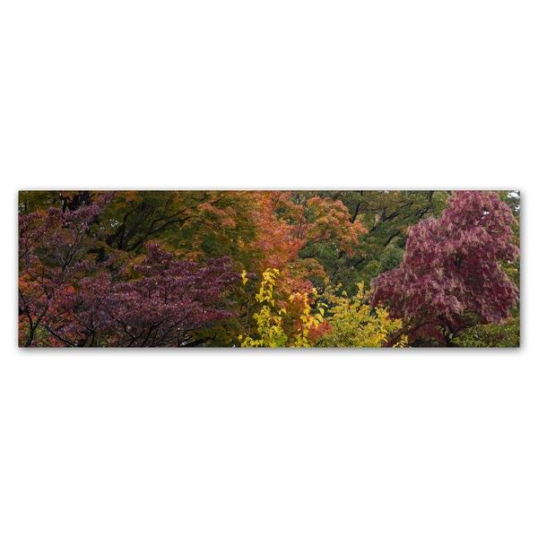 Kurt Shaffer 'Autumn's Diversity' Canvas Art - Multi