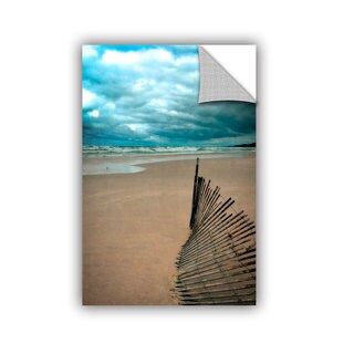 ArtWall Kevin Calkins ' Seagull And Snowfence ' Artappealz Removable Wall Art