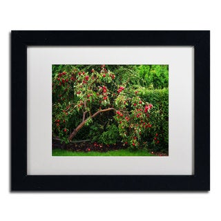 Philippe Sainte-Laudy 'The Apple Tree' Framed Canvas Art