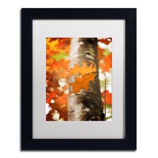 Philippe Sainte-Laudy 'Oak in Autumn' Framed Canvas Art