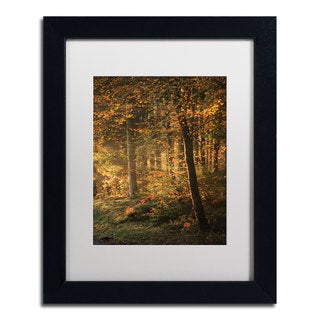 Philippe Sainte-Laudy 'Some Memories Never Fade' Framed Canvas Art