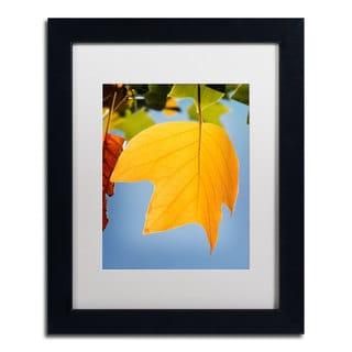 Philippe Sainte-Laudy 'Yellow Autumn' Framed Canvas Art