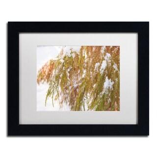 Kurt Shaffer 'Winter on Redwood' Framed Canvas Art