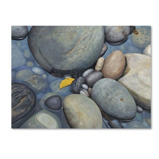 Stephen Stavast 'Reflections on a Gray Day' Canvas Art