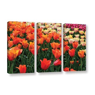ArtWall Kevin Calkins ' Tulips In Spring 3 Piece ' Gallery-Wrapped Canvas Set