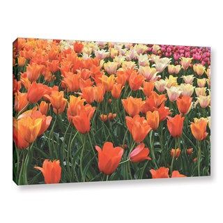 ArtWall Kevin Calkins ' Tulips In Spring ' Gallery-Wrapped Canvas
