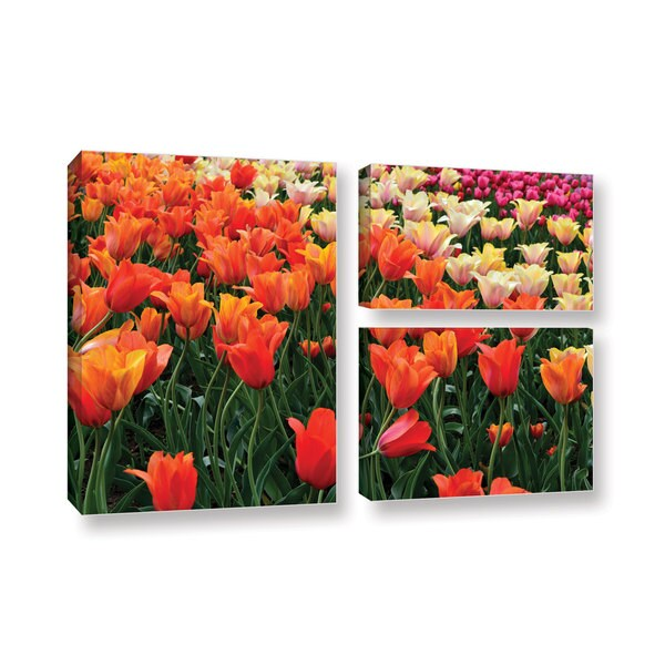 ArtWall Kevin Calkins ' Tulips In Spring 3 Piece ' Gallery-Wrapped Canvas Flag Set