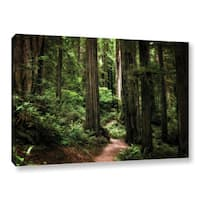ArtWall Kevin Calkins ' Enchanted Path ' Gallery-Wrapped Canvas