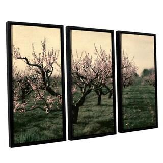 ArtWall Kevin Calkins ' Cheery Cherries 3 Piece Floater Framed Canvas Set