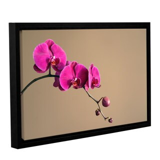 ArtWall Elena Ray ' Magenta Orchid ' Gallery-Wrapped Floater-Framed Canvas