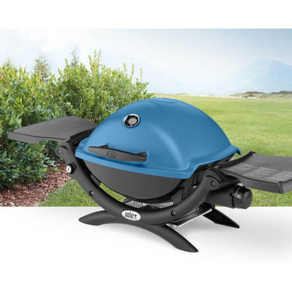 Shop Weber Q1200 Portable Gas Grill Free Shipping Today