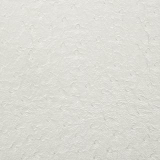 G704 Off White Ostrich Emu Weather Resistant Marine Upholstery Vinyl (2 options available)