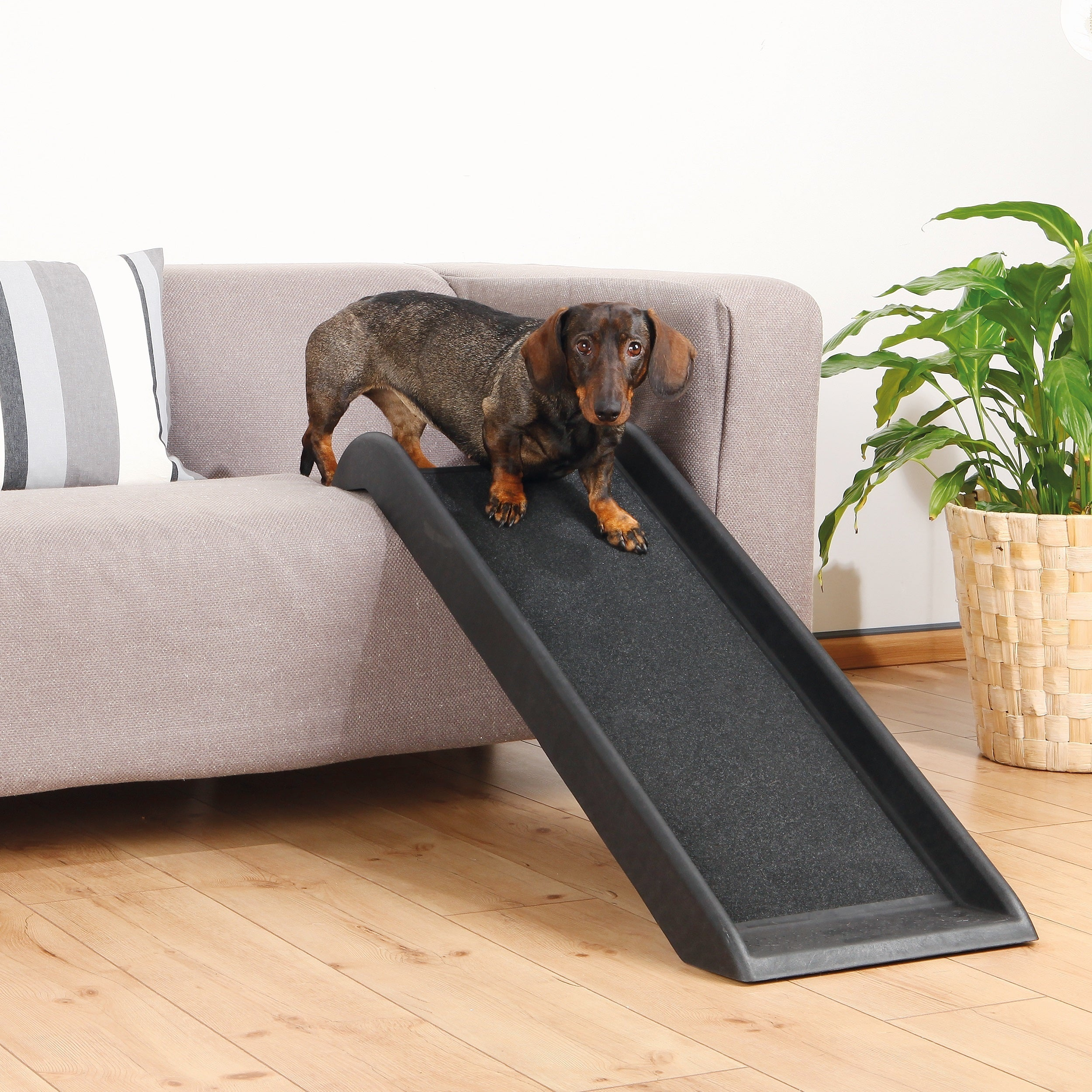 Trixie 39-inch Pet Safety Ramp (Black)