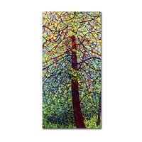 Mandy Budan 'Kaleidoscope' Gallery Wrapped Canvas Art - Multi