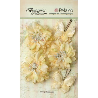 Botanica Mums & Butterflies 2in To 2.5in 5/Pkg Ivory