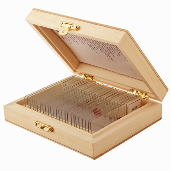 25 Glass Prepared Microscope Slides with Wooden Box