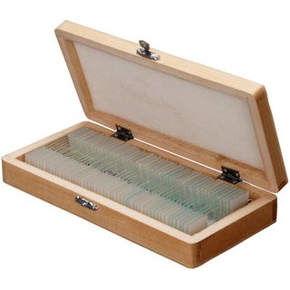 50 Biology Pathology Prepared Microscope Slides Set