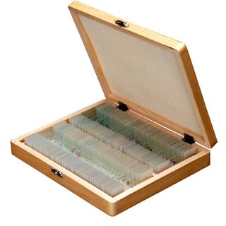 100 PC Prepared Microscope Glass Slides - Set B