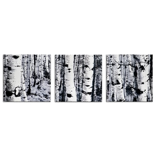 Metal Art Studio 'Aspen Triptych' Contemporary Photograph Print Giclée on Metal