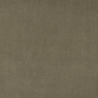 A0000D Taupe Authentic Durable Cotton Velvet Upholstery Fabric