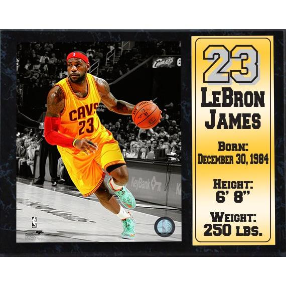 official photos da96f dfd3e Lebron James Cleveland Cavaliers 12-inch x 15-inch Stat Plaque