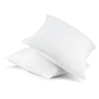 Link to Beautyrest Euro Square Pillow, Set of 2 Similar Items in Pillows