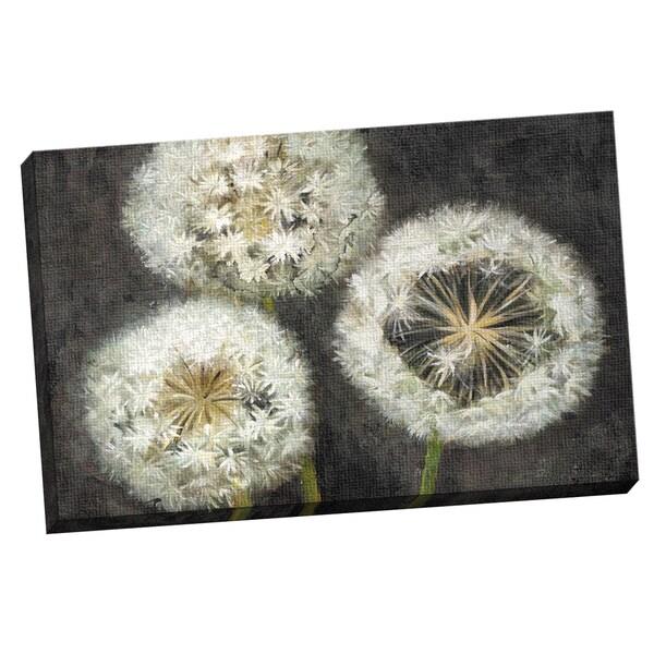 Shop Portfolio Canvas Decor Sandy Doonan \'Three Wishes\' Framed ...