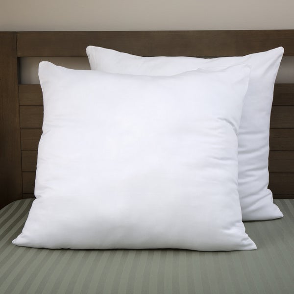 Shop Moments Cotton Overfilled 40 X 40 Euro Square Pillow Set Of 40 Adorable 30 Inch Euro Pillow Inserts