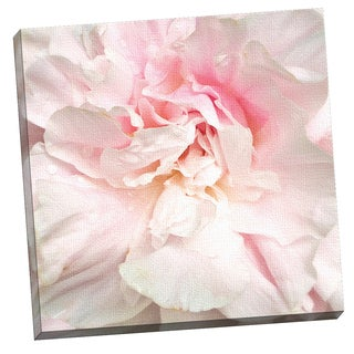 Portfolio Canvas Decor Power Puff Peony by Rebecca Swanson 24x24, Framed and Stretched, Ready to Hang