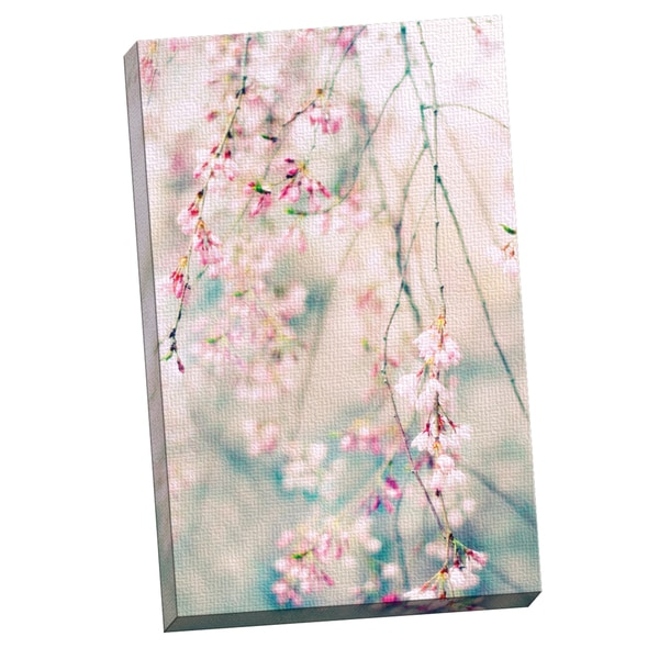 Cherry Blossom Canvas Wall Art portfolio canvas decor jessica jenney 'weeping cherry blossoms