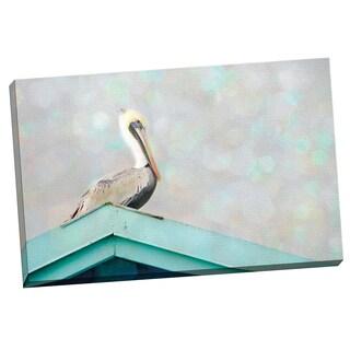 Portfolio Canvas Decor Elizabeth Urquhart 'Pelican Peak' Framed Canvas Wall Art