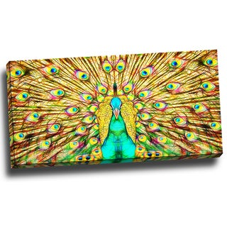 Design Art 'Flashy Feathers Peacock' 40 x 20 Canvas Art Print
