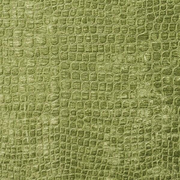 Shop A0151a Green Textured Alligator Shiny Woven Velvet Upholstery
