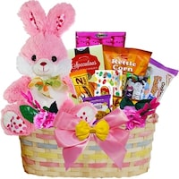 Easter glamour girl easter gift basket free shipping today my special bunny easter gift basket blue or pink purple plush bunny rabbit negle