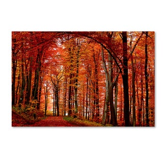 Philippe Sainte-Laudy 'The Red Way' Gallery Wrapped Canvas Wall Art