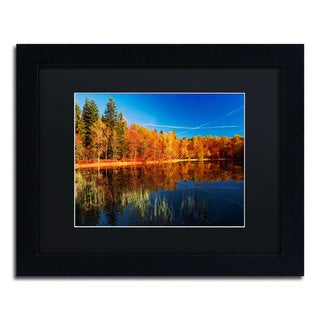 Philippe Sainte-Laudy 'Call of the Wild' Black Framed Canvas Wall Art