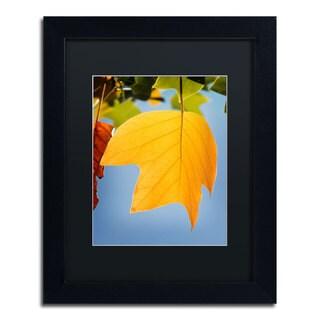 Philippe Sainte-Laudy 'Yellow Autumn' Black Framed Canvas Wall Art