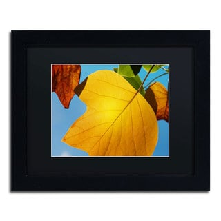 Philippe Sainte-Laudy 'Piece Fall' Black Framed Canvas Wall Art