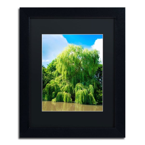 Philippe Sainte-Laudy 'Weeping Willow' Black Framed Canvas Wall Art