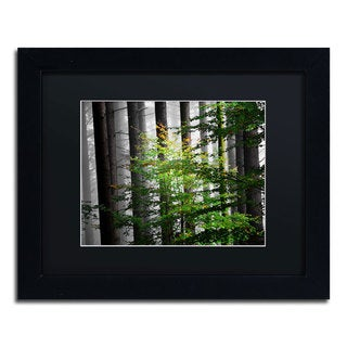 Philippe Sainte-Laudy 'The Cell' Black Framed Canvas Wall Art