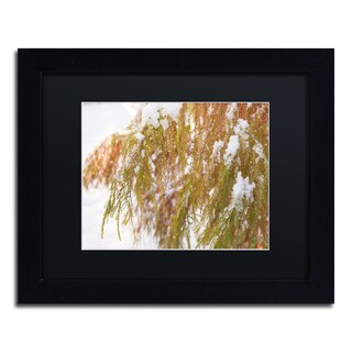 Kurt Shaffer 'Winter on Redwood' Black Framed Canvas Wall Art