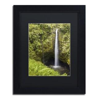 Chris Moyer 'Akaka Falls' Black Framed Canvas Wall Art