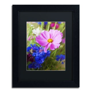Philippe Sainte-Laudy 'Cosmo' Framed Canvas Wall Art