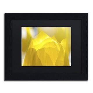 Kurt Shaffer 'Yellow Tulip' Framed Canvas Wall Art