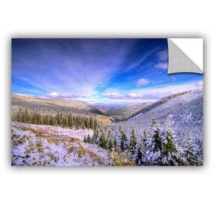 ArtAppealz Dragos Dumitrascu 'Winter Lands Ii' Removable Wall Art