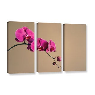 ArtWall Elena Ray ' Magenta Orchid 3 Piece ' Gallery-Wrapped Canvas Set