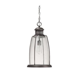Capital Lighting Harbour Collection 1-light Graphite Hanging Outdoor Lantern