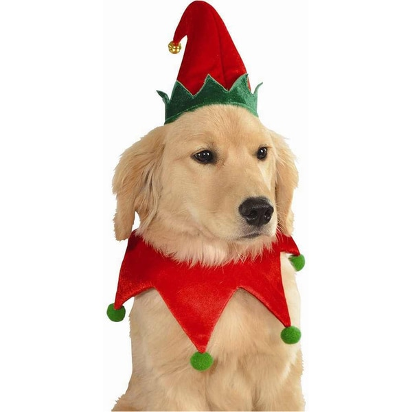 Christmas Elf Hat and Collar Pet Dog Costume  sc 1 st  Overstock.com & Shop Christmas Elf Hat and Collar Pet Dog Costume - Free Shipping On ...